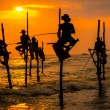 Silhouettes of the traditional fishermen at the su...