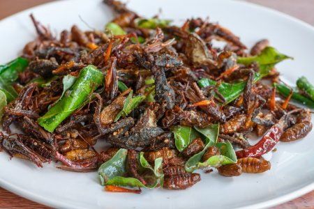 Photo for Fried edible insects mix on white plate with green lime leaves.  Fried insects are regional delicacies food in Thailand - Royalty Free Image