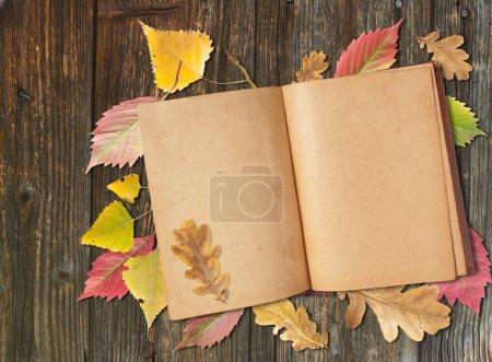 Photo pour Feuilles d'automne et vieux livre sur la table - image libre de droit
