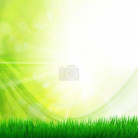 Photo pour Fond avec herbe - image libre de droit