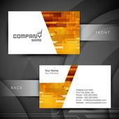 Professional and designer business card set or visiting card set EPS 10