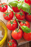 Cherry rajčaty, bazalkou a olivovým olejem dřevěné pozadí