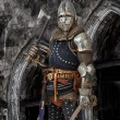 Image of knight who is holding a sword and a hatch...