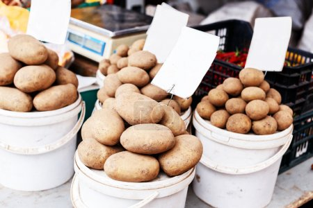 Three buckets of potatoes at the market