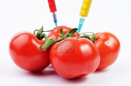 Tomatoes and colorful syringes
