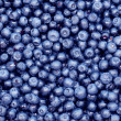 Freshly picked blueberries, background...
