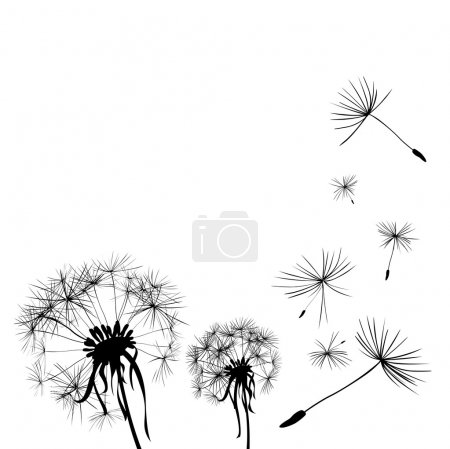 Two dandelions in wind on light blue background...
