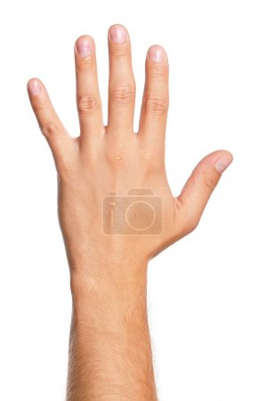 Photo for Man hand sign isolated on white background - Royalty Free Image