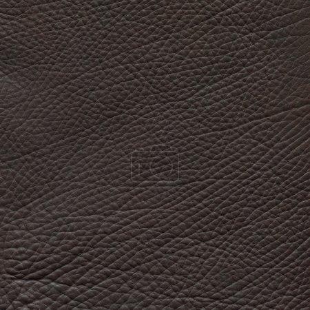 Photo pour Fond de closeup texture cuir marron. - image libre de droit