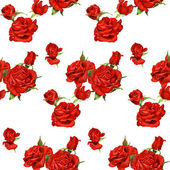 Seamless pattern of red roses on a white background