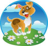 Oranžové zábava pes na barvu pozadí