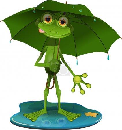 Frog with a green umbrella