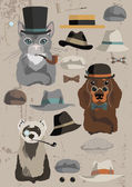 Animals in Hats