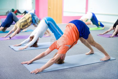 Photo for People practicing yoga at health club - Royalty Free Image