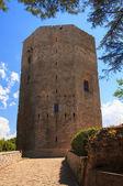 Torre di Federico II, Enna