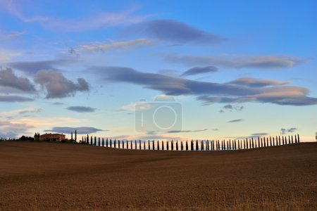 Photo for Idyllic Tuscan landscape at sunset light near Pienza, Vall d'Orcia Italy, Europe - Royalty Free Image