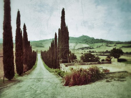Photo for Idyllic rural Tuscan landscape with old farmhouse near Pienza at sunset, Vall d'Orcia Italy, Europe. Filtered. Vinage effect applied - Royalty Free Image