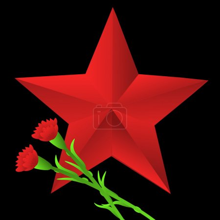red bright star and two flowers of carnation