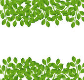 Background for a design with green branches vector illustration
