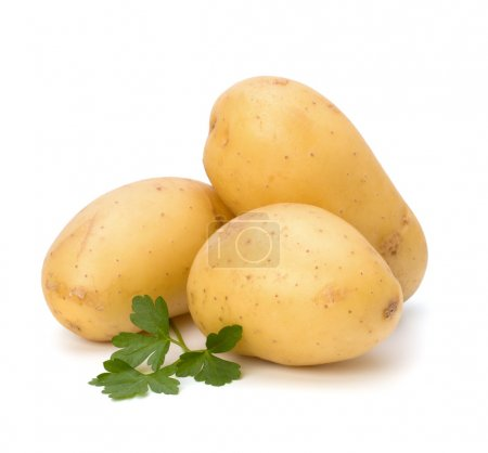 Photo for New potato and green parsley isolated on white background close up - Royalty Free Image