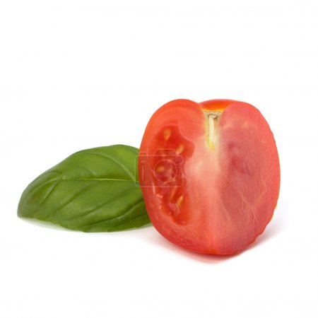 Tomato vegetable segment and basil leaf