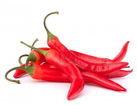 Hot red chili or chilli pepper
