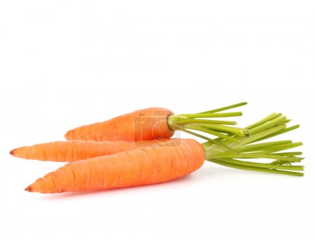 Photo for Carrot vegetable with leaves isolated on white background cutout - Royalty Free Image