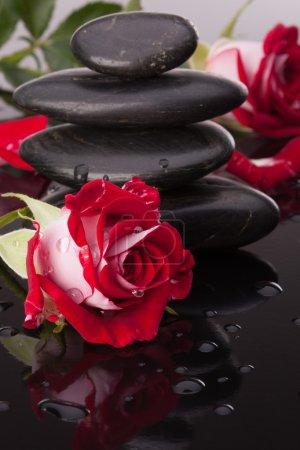 Photo pour Spa Pierre et rose fleurs nature morte. concept de soins de santé. - image libre de droit
