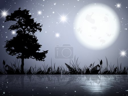 Moon Night Lake