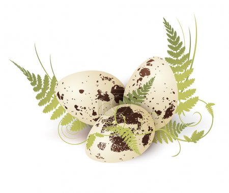 Quail Egg With Fern