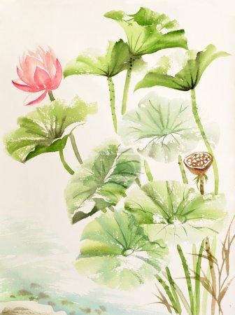 Photo pour Aquarelle de Lotus, œuvres d'art originales, style asiatique - image libre de droit