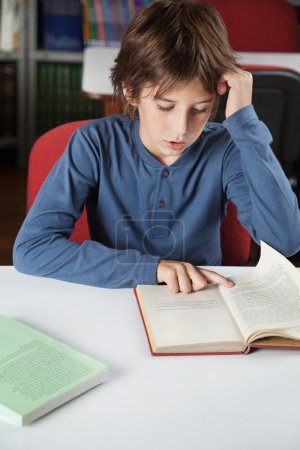 Schoolboy Reading Book At Table