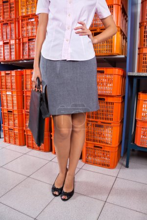 Businesswoman Standing With Hand On Hip In Laundry