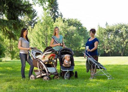 Mothers With Baby Carriages In Park