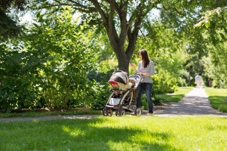 Mother Pushing Baby Carriage In Park