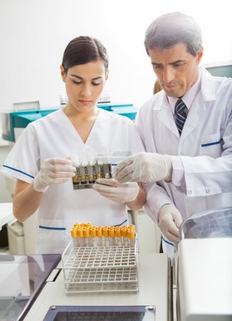 Researchers Examining Chemicals