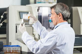 Researcher Analyzing Urine Samples In Lab