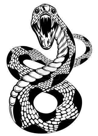 Illustration pour Illustration vectorielle du serpent à bouche ouverte sur fond blanc - image libre de droit