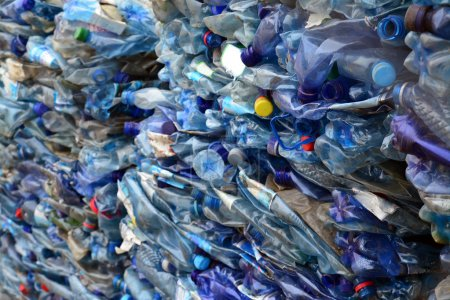 Photo for Pile of plastic bottles prepared for recycling - Royalty Free Image