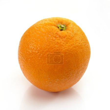 Photo pour Mûr orange sur fond blanc - image libre de droit