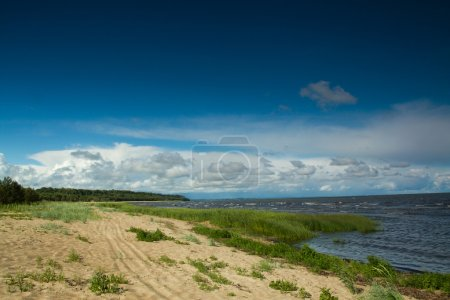 Baltic Sea in summer
