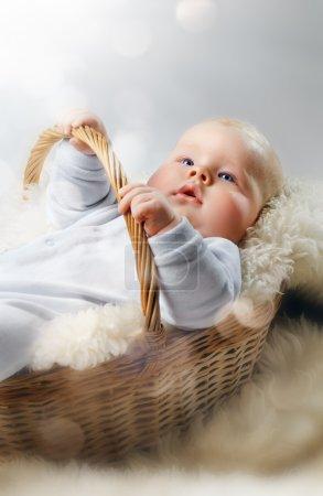 Photo pour Bébé se trouvant dans le panier - image libre de droit