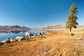 Mountain lake in mongolian wilderness