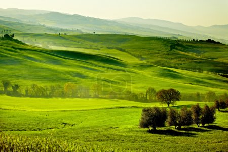 Photo for Countryside, San Quirico Orcia , Tuscany, Italy - Royalty Free Image