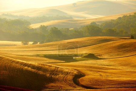 Photo for View of typical Tuscany landscape - Royalty Free Image