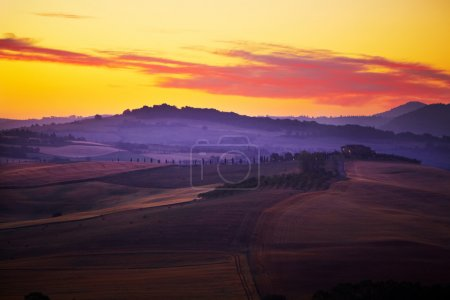 Photo for Landscape in Tuscany at sunset in summer - Royalty Free Image
