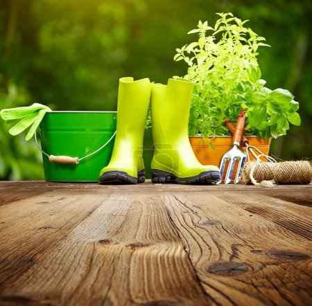 Photo for Outdoor gardening tools on old wood table - Royalty Free Image