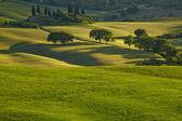 Spring Tuscany hills