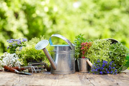 Photo for Outdoor gardening tools and flowers - Royalty Free Image