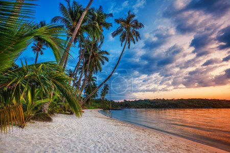 Photo for Tropical beach at beautiful sunset. Nature background - Royalty Free Image